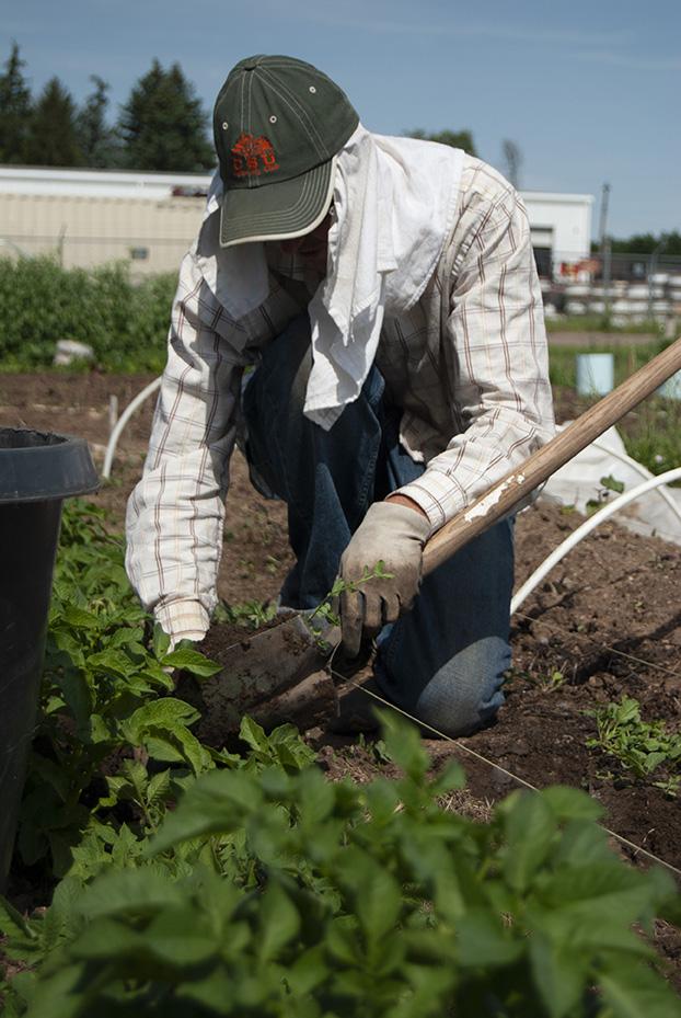 HUGS Urban Farming Fort Collins