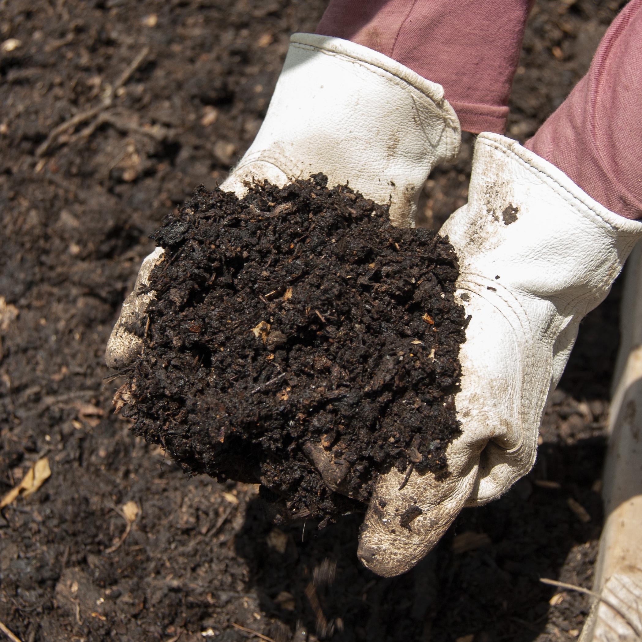 Composting Education